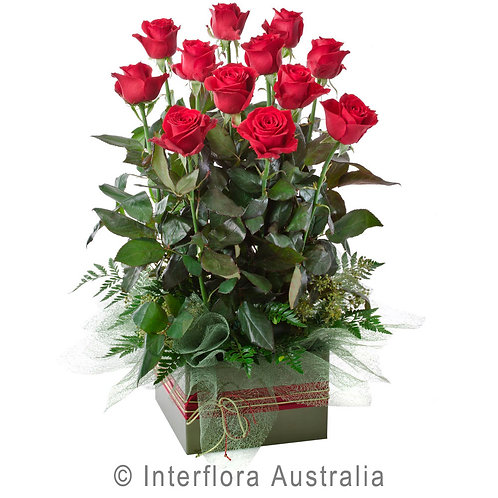 Hunters Hill Florist Now Forever Red Pink White Rose Box Arrangement Dozen 12 24 Gladesville Woolwich Putney Drummoyne Ryde
