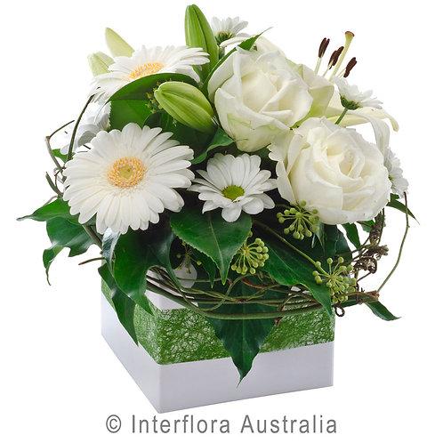 Floral DeVine Hunters Hill Florist Hope White Flower Arrangement Delivery Gladesville Woolwich Cove Putney Drummoyne Ryde