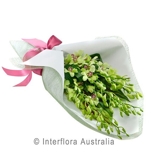 Floral DeVine Hunters Hill Florist Fresh Singapore Orchid Bouquet Daily Delivery Woolwich Lane Cove Putney Drummoyne Ryde