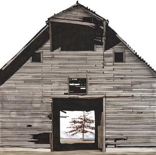 """""""The Gamble Barn with Pin Oak"""""""