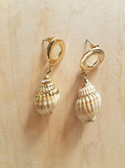 Gold Circle Shell Earrings