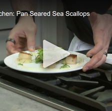 In the Kitchen: Pan Seared Sea Scallops