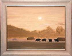 Pigs in mist