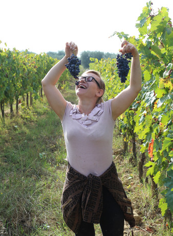 Focus on our grape verieties: Malvasia Nera or Tempranillo? by Seila Bruschi, WSET Somm.