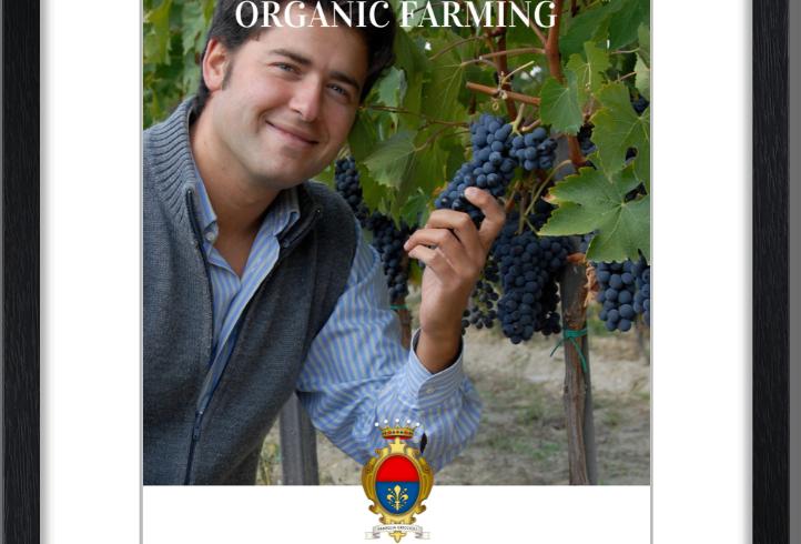 Monte Chiaro framed posters: Alessandro & Grapes