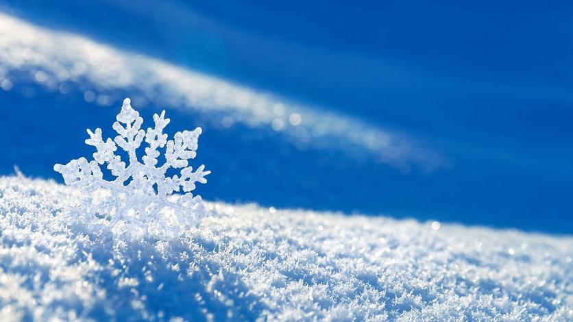 winter images.jpg