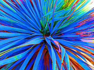 Unseen Colors III