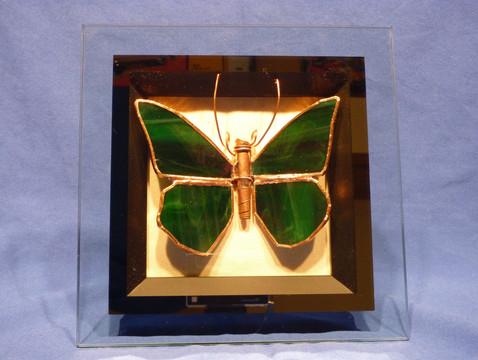 Petrifly 3