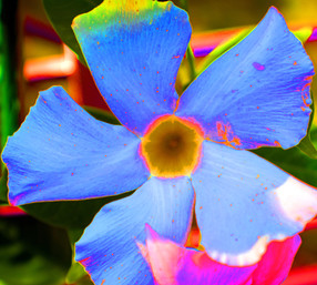 Unseen Colors XXX