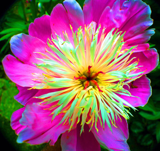 Unseen Colors XLV