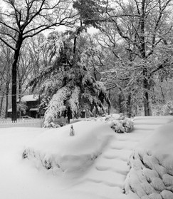 Winter On The Doorstep