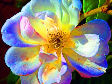 Unseen Colors VIII