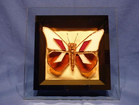 Petrifly 5