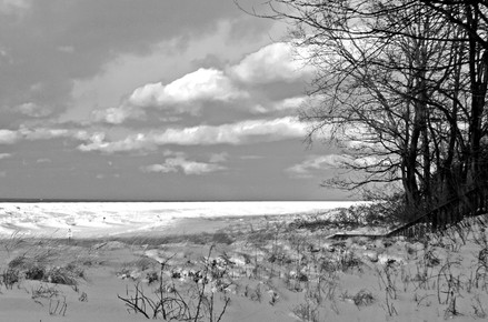 Michiana Winter Beach IV