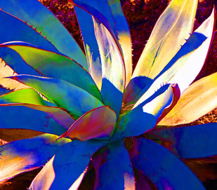 Unseen Colors XXV