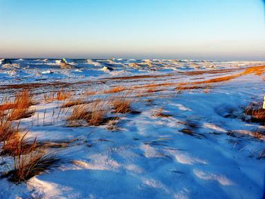 Michiana Winter Beach I