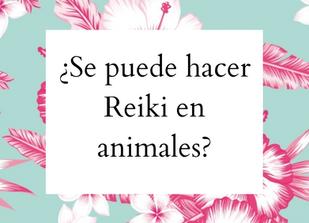 Reiki en Animales