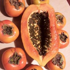 Fruit Power