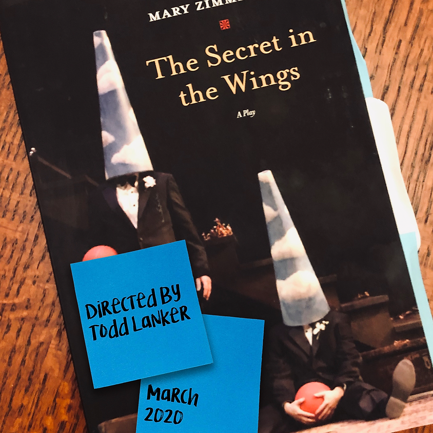 The Secret in the Wings by Mary Zimmerman