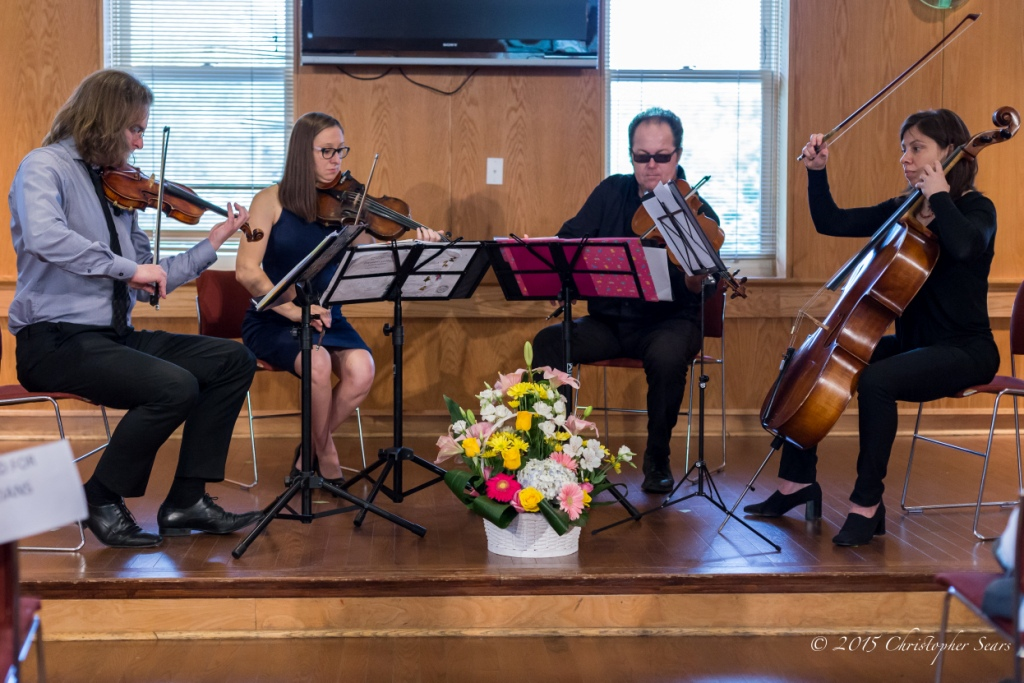 GTA Strings Quartet