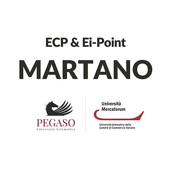 Pegaso-Mecatorum2020_Profilo+Cover-FB-EC