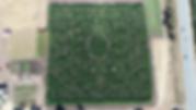 brookshirefarms_maze_Pixel5.png