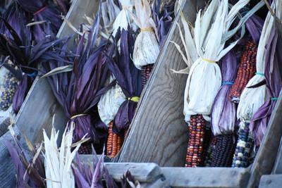 2018 Indian corn