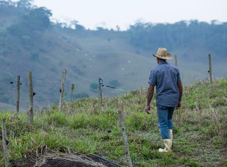 Proprietários rurais atuam na recuperação de nascentes e áreas degradadas