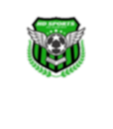 logo hd sport academy 1 transparent.png