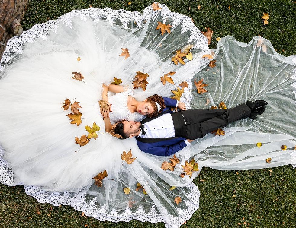 adult-bride-celebration-ceremony-265722_edited_edited.jpg