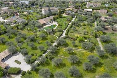 le parc des oliviers vue aérienne