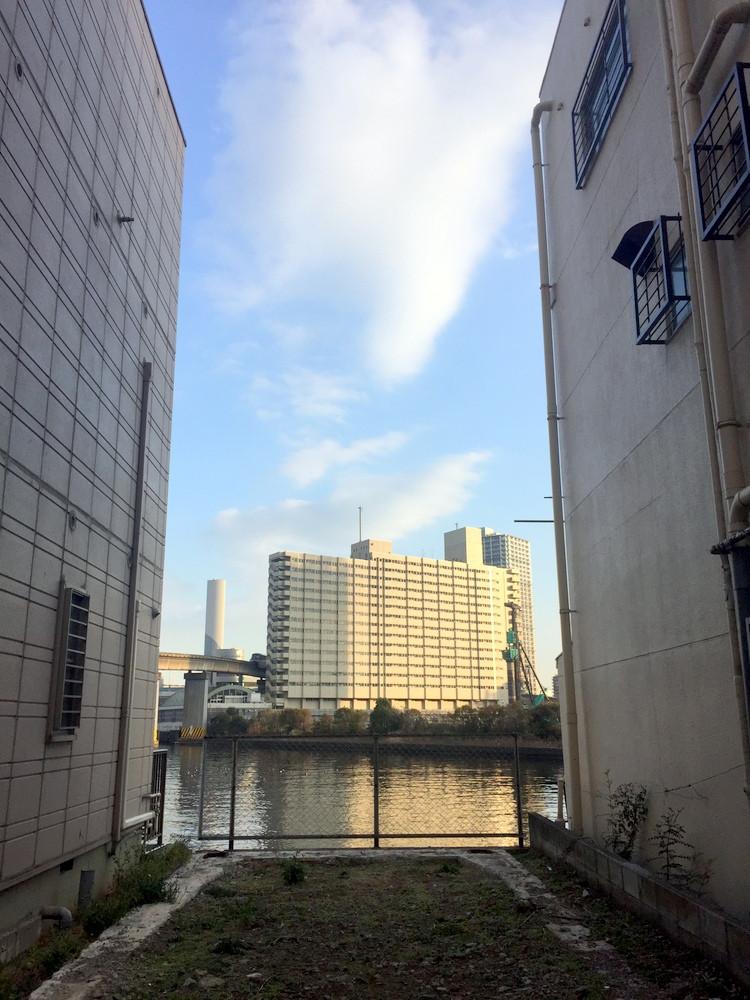 道路側から運河を見る