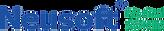 Neusoft_logo.png
