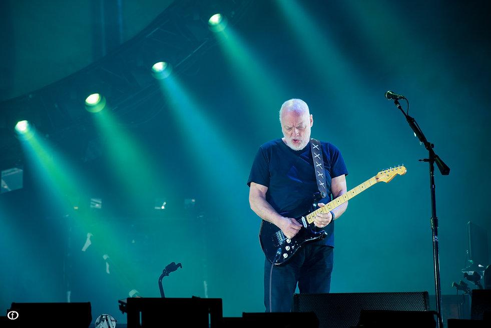 David Gilmour 2015-4587.jpg