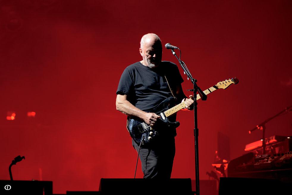David Gilmour 2015-4494.jpg