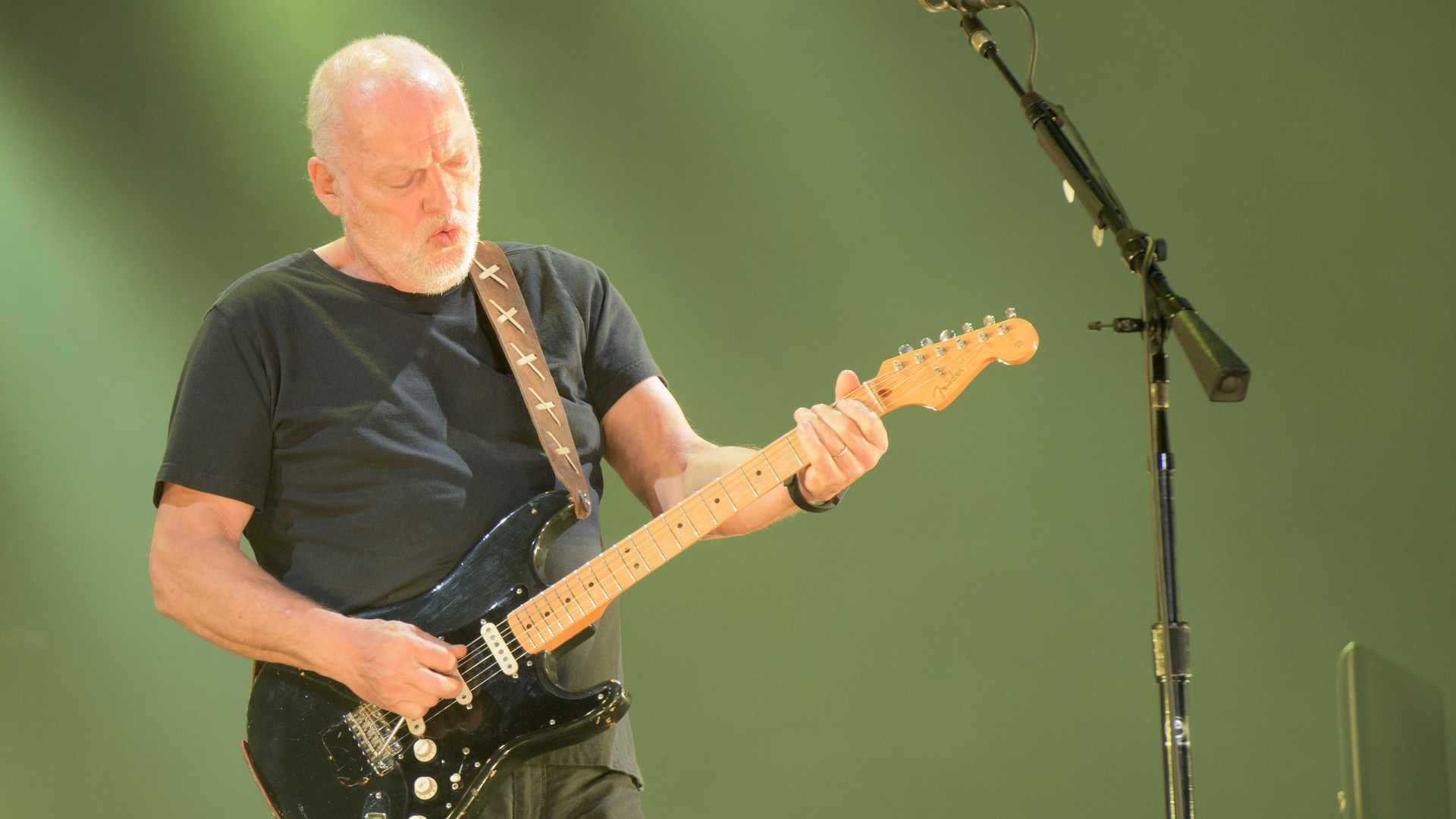 David Gilmour 2015-4616.jpg