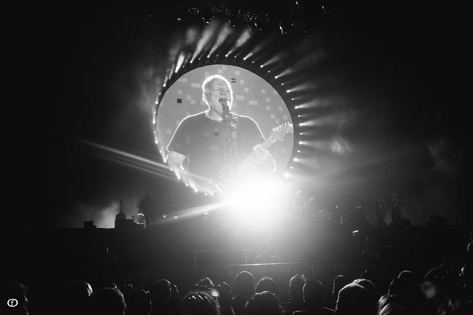 David Gilmour-97.jpg