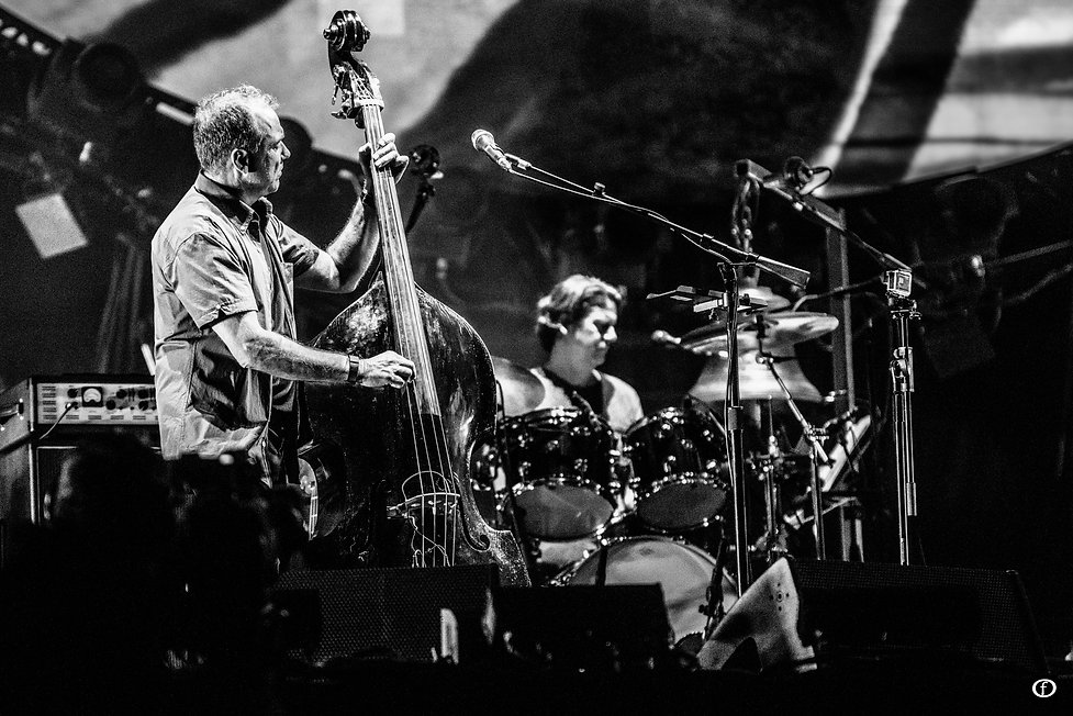 David Gilmour 2015-4278.jpg