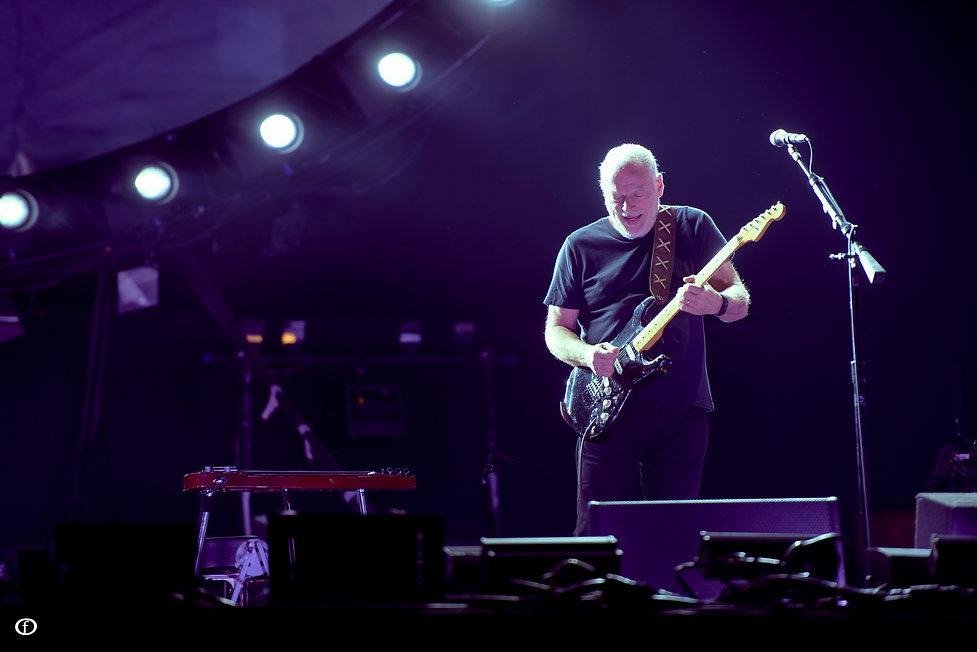 David Gilmour-4025.jpg