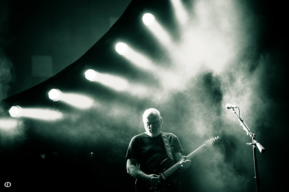 David Gilmour-5071.jpg