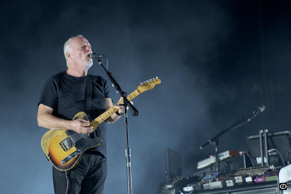David Gilmour 2015-3871.jpg