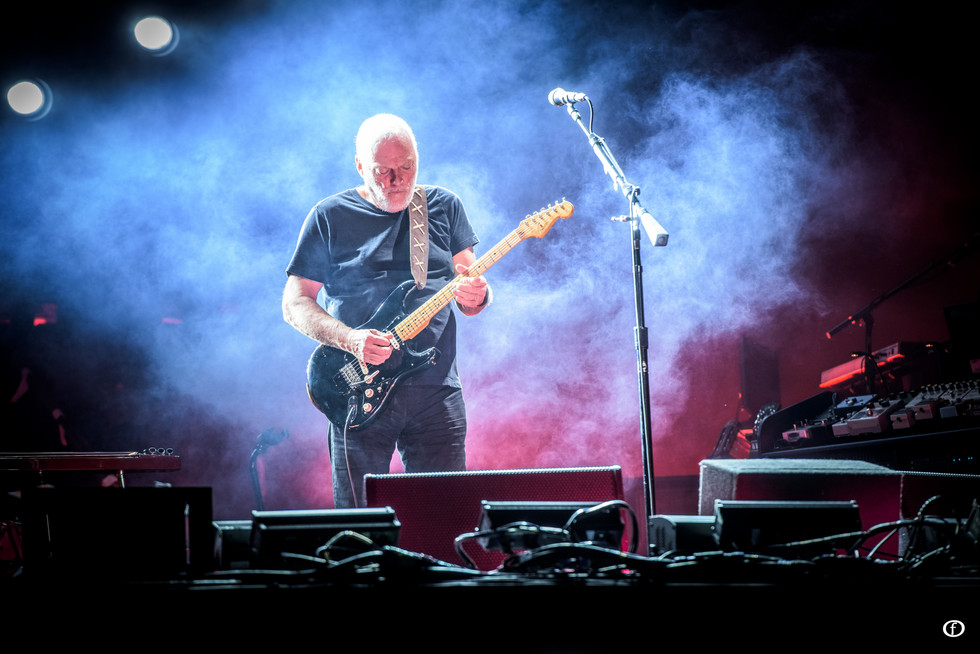 David Gilmour 2015-4010.jpg
