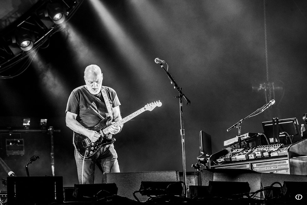 David Gilmour 2015-4641.jpg