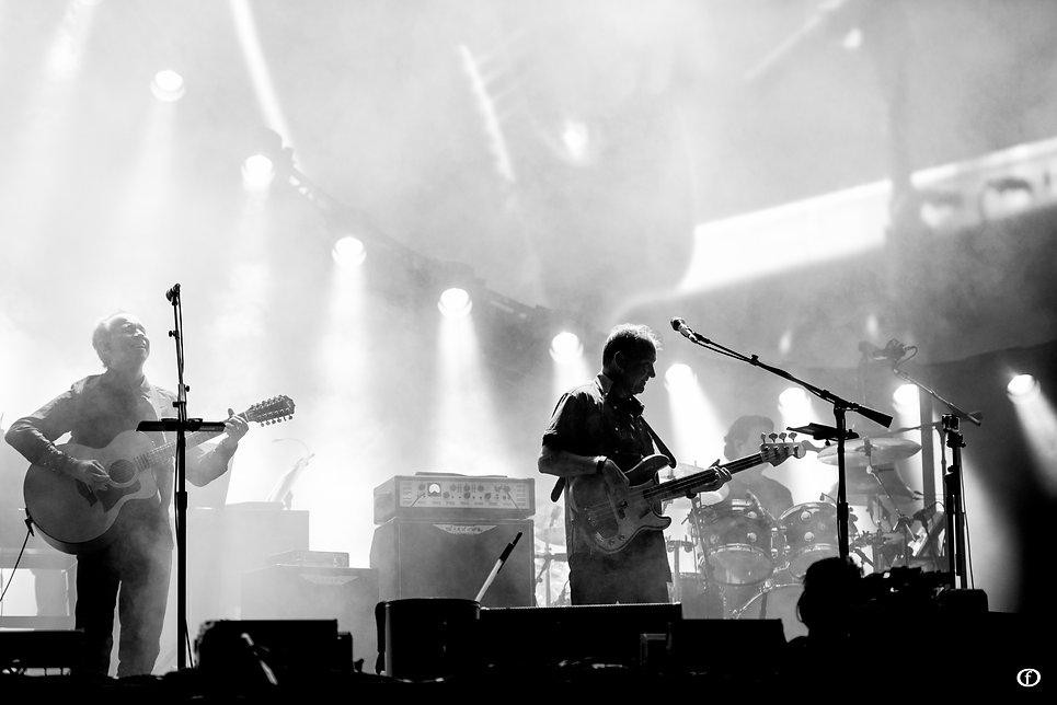 David Gilmour 2015-3931.jpg