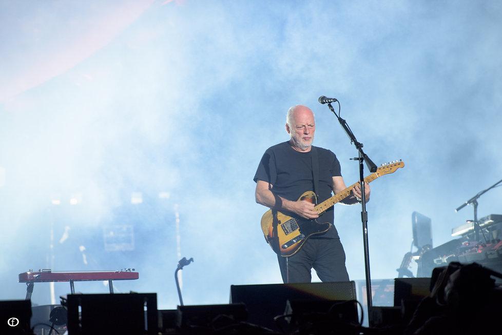 David Gilmour 2015-3856.jpg