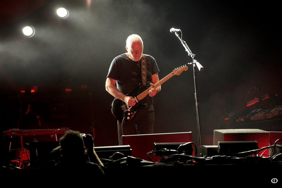 David Gilmour 2015-4007.jpg