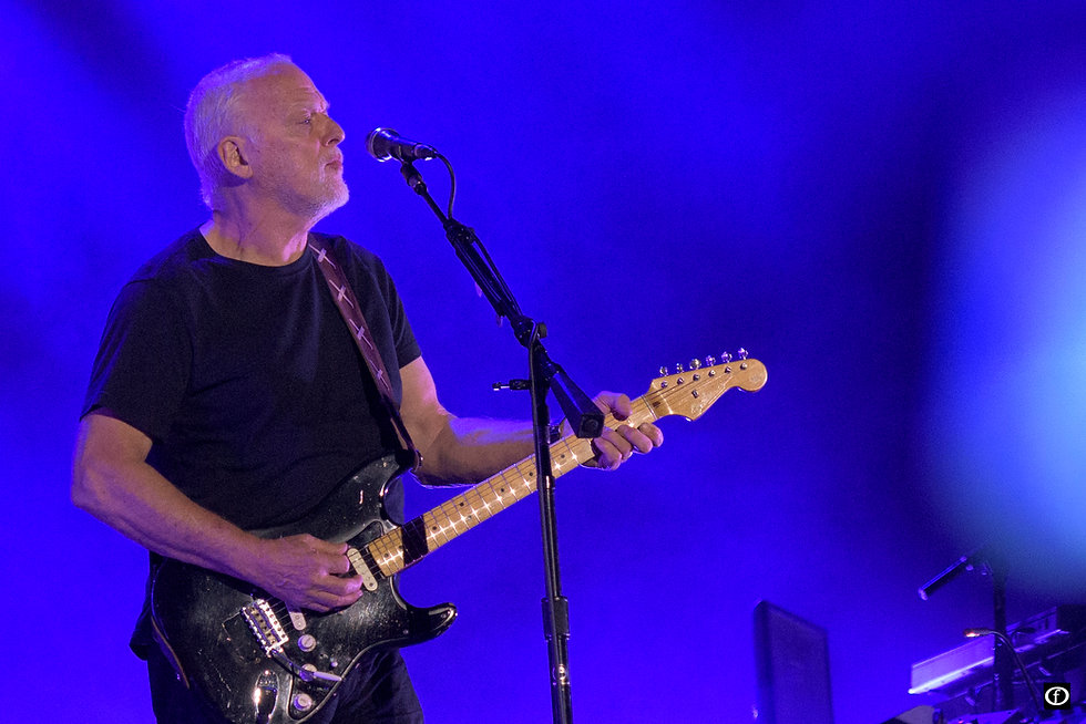 David Gilmour-4103.jpg