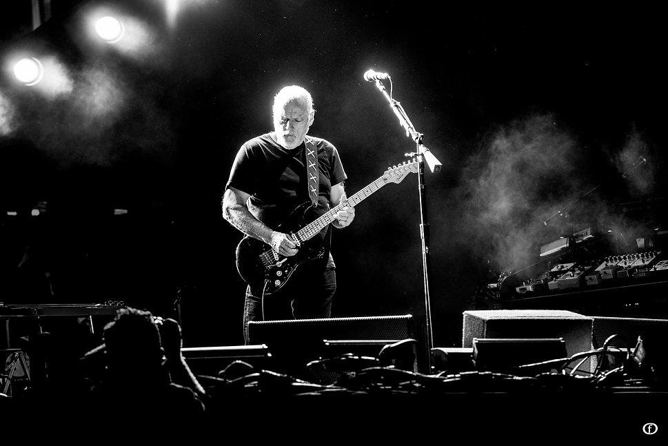 David Gilmour 2015-4008.jpg