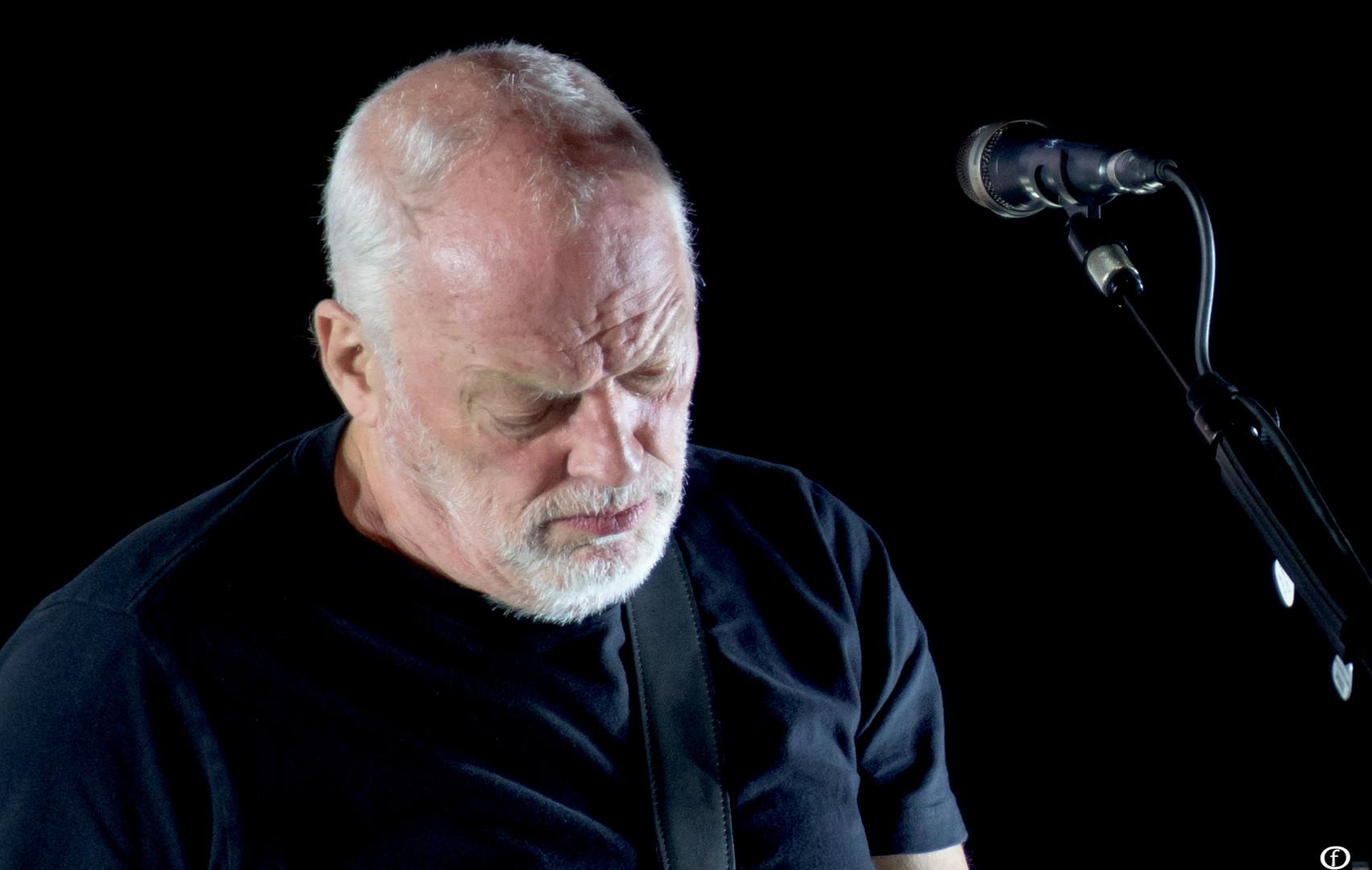 David Gilmour 2015-3873.jpg