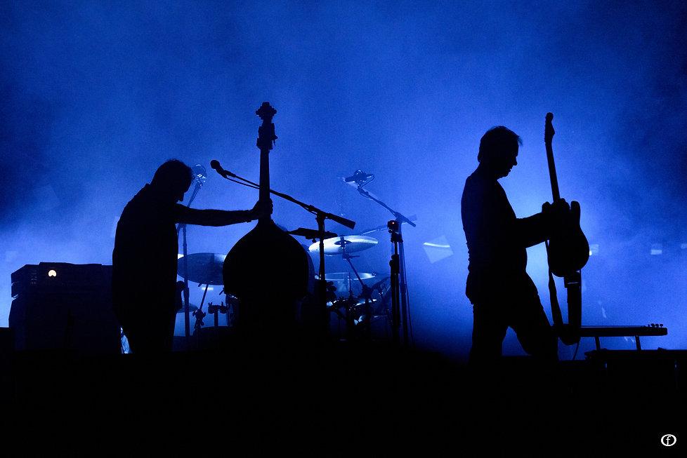 David Gilmour 2015-3956.jpg